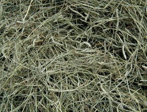 Understanding Hay Analysis